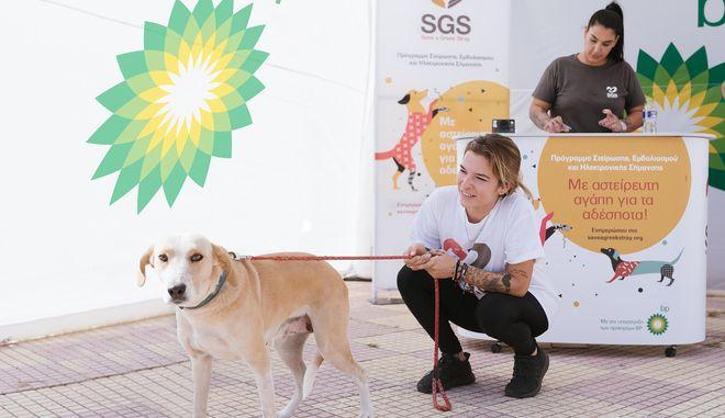 SGS: Αστείρευτη αγάπη για τα αδέσποτα με την υποστήριξη των πρατηρίων BP