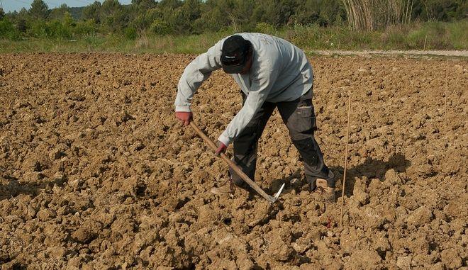"""Υποχρεωτικό το """"Βιβλίο"""" απασχολούμενων σε αγροτικές εργασίες"""