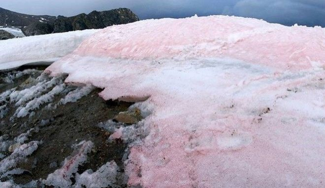 Ροζ πάγος στα Αλπικά τοπία  –Ένα φυσικό φαινόμενο που κατέγραψε πρώτος ο Αριστοτέλης