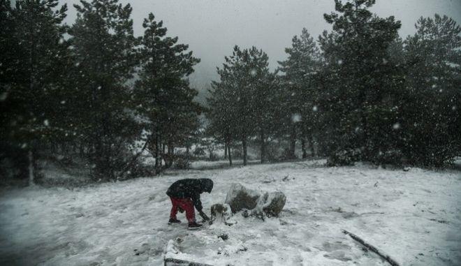 Χιονόπτωση στην Πάρνηθα, την Πέμπτη 26 Δεκεμβρίου 2019