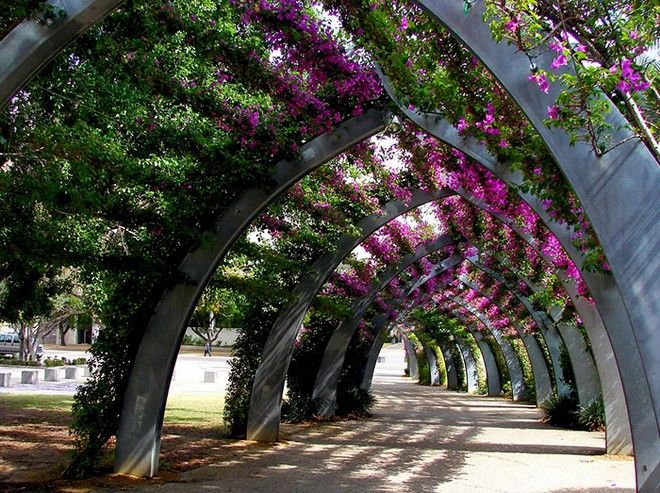 Στη Λέσβο, ο πιο όμορφος δρόμος του κόσμου