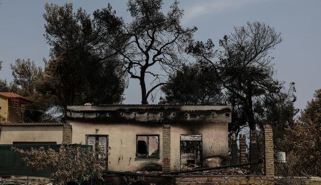Εικόνα από τη φωτιά στη βόρεια Εύβοια