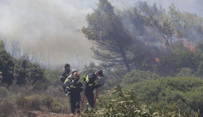 Πυρκαγιά εκδηλώθηκε λίγο μετά τις 12.00 σε δασική έκταση στην περιοχή Αύρα, στον Μαραθώνα Αττικής. Λόγω της πυρκαγιάς εκκενώθηκε ο οικισμός Αύρα,Δευτέρα 5 Αυγούστου 2013 (EUROKINISSI/ΓΕΩΡΓΙΑ ΠΑΝΑΓΟΠΟΥΛΟΥ)