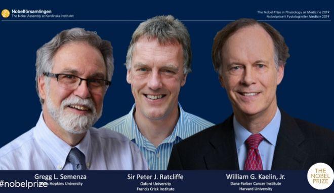 Σε τρεις επιστήμονες το Νόμπελ Ιατρικής - Φυσιολογίας