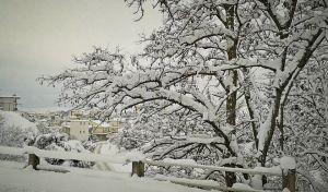Καλλιάνος: Έρχεται ξηρό κρύο - Σε ποιές περιοχές θα χιονίζει ως την Παρασκευή