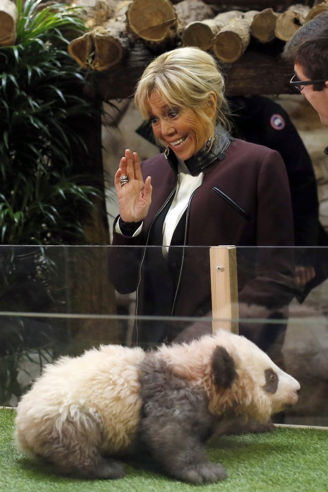 French First lady Brigitte Macron reacts after a panda cub tried to bite her hand during a naming ceremony of the panda born at the Beauval Zoo, in Saint-Aignan-sur-Cher, France, Monday, Dec. 4, 2017. The 4-month-old cub is called Yuan Meng, which means
