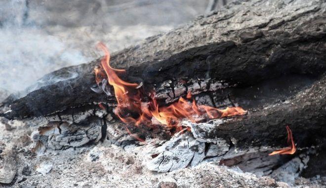 Φωτιές, φωτό αρχείου