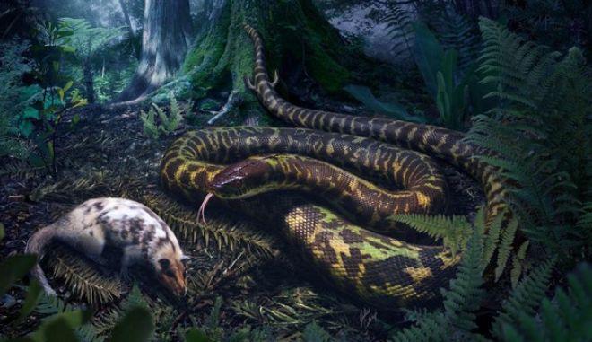 Τα αρχαία φίδια είχαν αστραγάλους και δάχτυλα