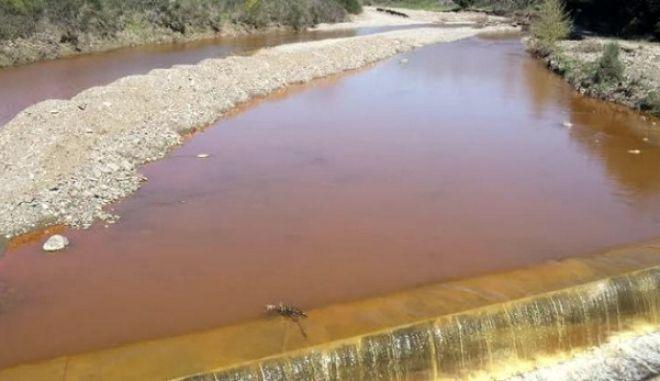 Χαλκιδική: Εισαγγελική έρευνα για μολυσμένο νερό από αρσενικό που σκότωσε κοπάδι