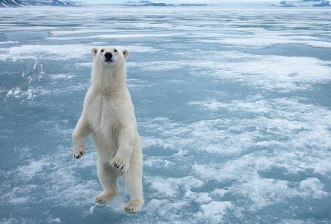 Από την Ανταρκτική στη Πολυνησία 15 τοπωνύμια με ελληνικές ρίζες