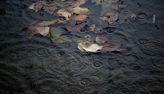 Prolonged rainfall in Thessaloniki, Greece on December 9, 2014. /    ,   9  2014.