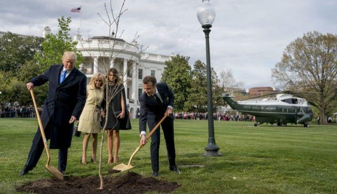Τραμπ και Μακρόν φυτεύουν τον δέντρο με τις συζύγους τους να παρακολουθούν