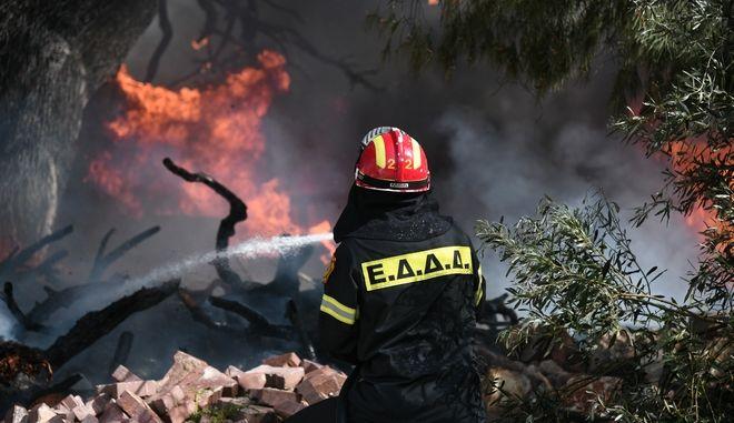 Μάχη με τις φλόγες δίνουν οι πυροσβέστες. Φωτό αρχείου.