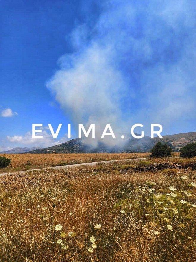 Εύβοια: Σε εξέλιξη μεγάλη φωτιά στην Κάρυστο - Ενισχύονται οι δυνάμεις