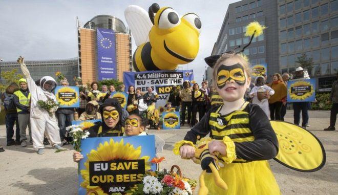Πληθαίνουν οι φωνές όσων ζητούν προστασία των μελισσών, που κινδυνεύουν με αφανισμό