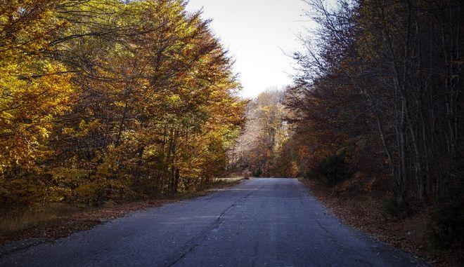 Φθινόπωρο στο όρος Βέρμιο
