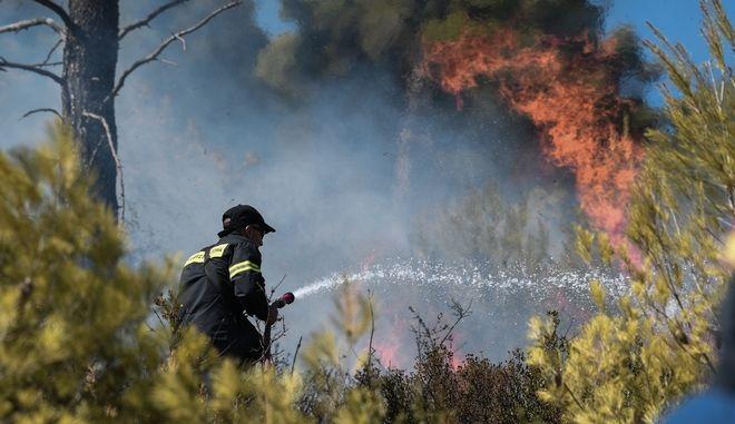 Στιγμιότυπο από πυρκαγιά