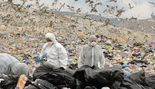 ΕΕΑΕ: Δεν τίθεται θέμα δημόσιας υγείας από τα ραδιενεργά απορρίμματα στην Κερατέα