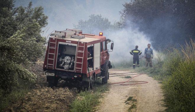 Πυρκαγιά στην Ηλεία, Αρχείο