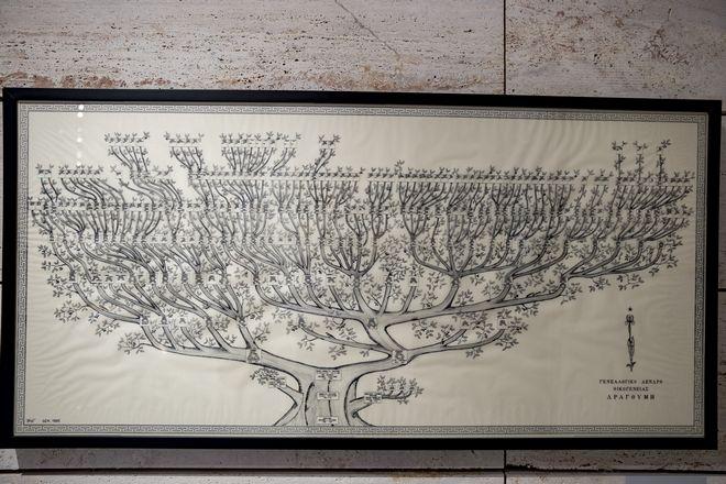 Το γενεαλογικό δέντρο του Ίωνα Δραγούμη