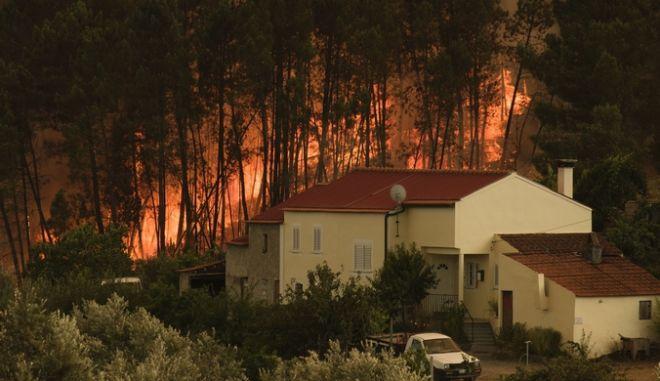 Φωτογραφία από τις φωτιές