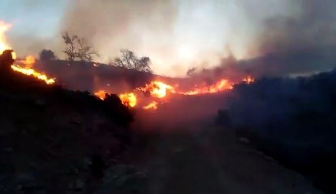 Πυρκαγιά ξέσπασε στο Λιμνάκαρο του Δήμου Λασιθίου