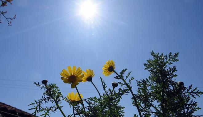 Καλός καιρός στην Αργολίδα