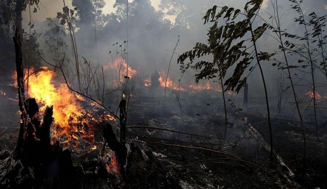 Τα μέτωπα της φωτιάς στον Αμαζόνιο συνεχίζουν να αυξάνονται και να επεκτείνονται