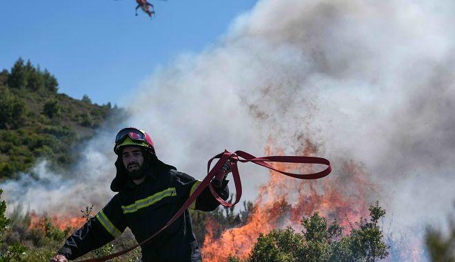 Φωτιά σε δασική έκταση (φωτογραφία αρχείου)