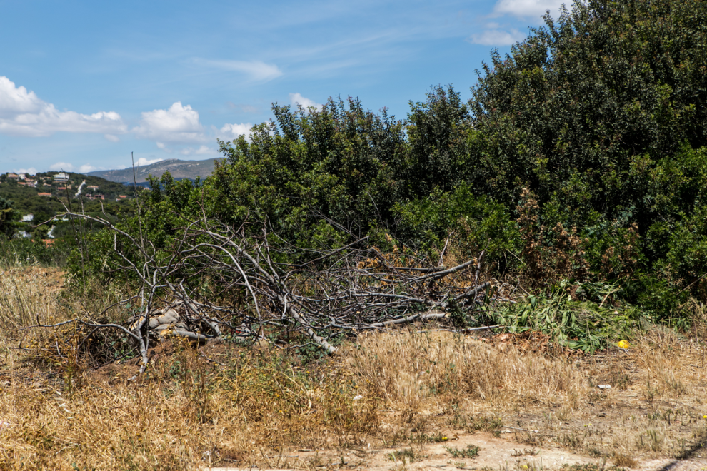 Σκουπίδια και δρόμοι στο πουθενά - Απροετοίμαστη για φωτιά η Αν. Αττική