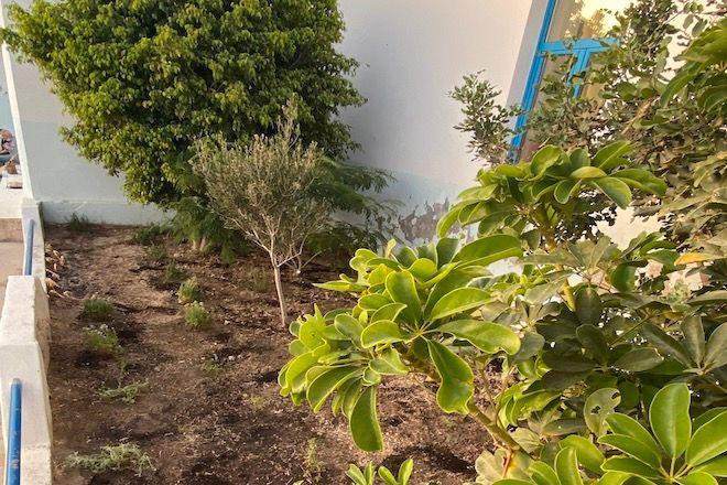 Κίμωλος: Ένας βοτανικός κήπος για τους μαθητές του δημοτικού