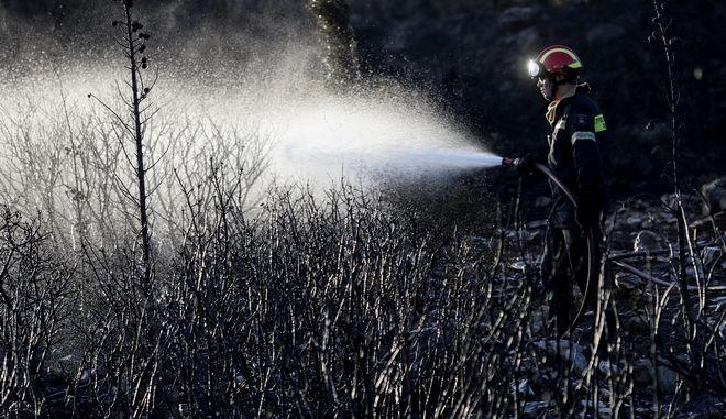 Πυροσβέστης επιχειρεί σε φωτιά