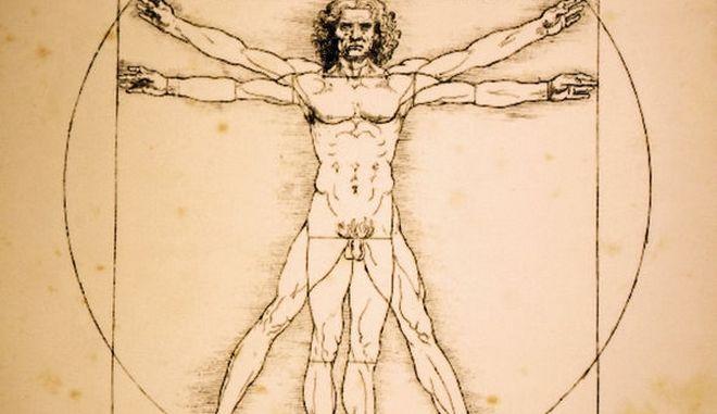 Ο «Άνθρωπος του Βιτρούβιου»