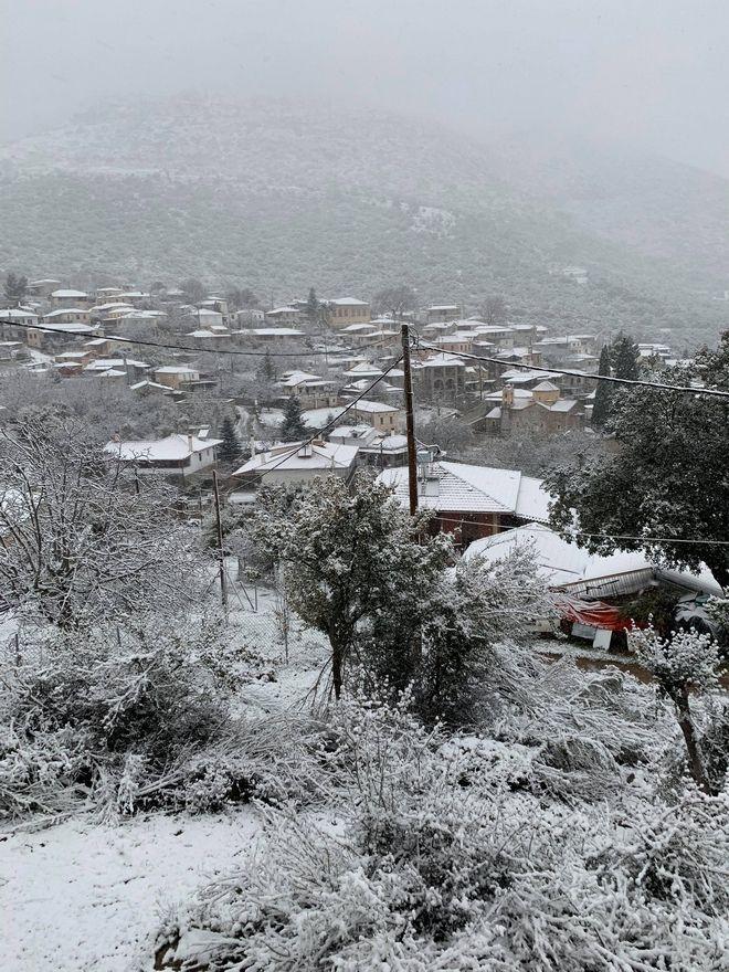 Η ''Ζηνοβία''  έφερε χιόνια στη Καρυά (Κολοκοτρωνίτσι),δήμος Άργους Μυκηνών, ορεινή Αργολίδα.