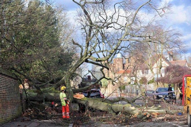 Σαρώνει την Ευρώπη η 'Φρειδερίκη': Εννέα νεκροί και τεράστιες καταστροφές από τους ισχυρούς ανέμους