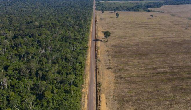 Το δάσος του Αμαζονίου, ο μεγαλύτερος πνεύμονας του πλανήτη, διαρκώς αποψιλώνεται