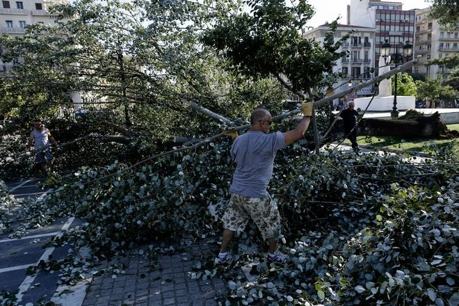 Tree fell next to the statue of Eleftherios Venizelos in Aristotelous Square caused by the strong winds blowing in Thessaloniki, Greece on July 3, 2017. /                    , 3  2017.