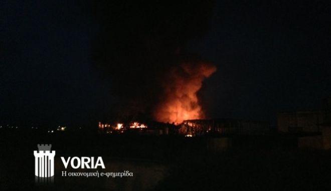 Μεγάλη ζημιά από τη φωτιά στις εγκαταστάσεις της Κρι Κρι