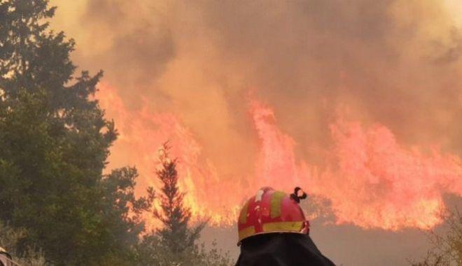 Ρέθυμνο: Υπό μερικό έλεγχο η φωτιά στο Αμάρι