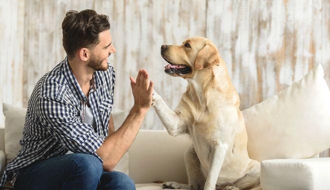 Σκύλος με τον ιδιοκτήτη του