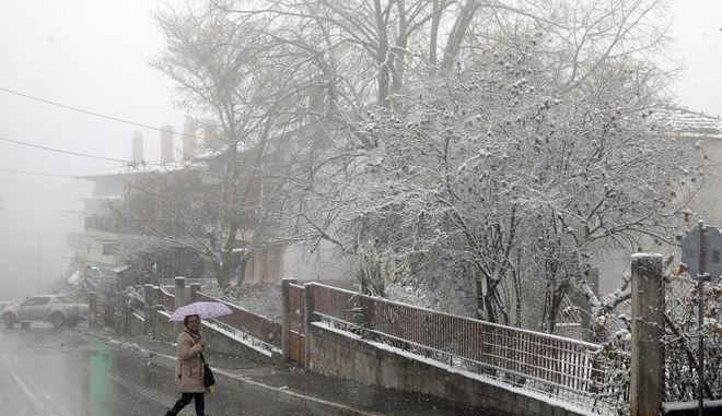 Snowfall in the mountainous eastern suburb of Chortiatis in Thessaloniki, Greece on November 29, 2016. /    , , 29  2016.