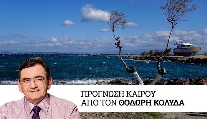 Δέντρο σε παραλία της Νέας Μάκρης. (EUROKINISSI/ΓΙΩΡΓΟΣ ΚΟΝΤΑΡΙΝΗΣ)
