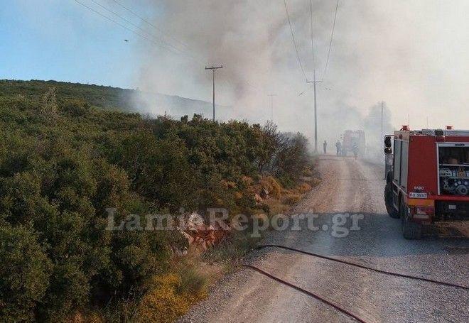 Σε εξέλιξη μεγάλη φωτιά στο Μαρτίνο-Έκλεισε η Εθνική Οδός