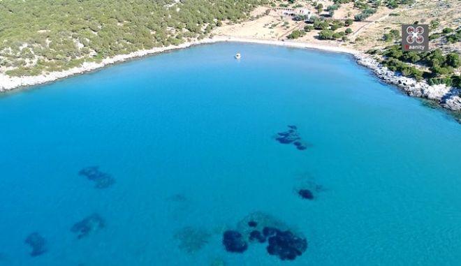 Το πιο εξωτικό... μαντρί της Ελλάδας - Νημπορειό Εύβοιας