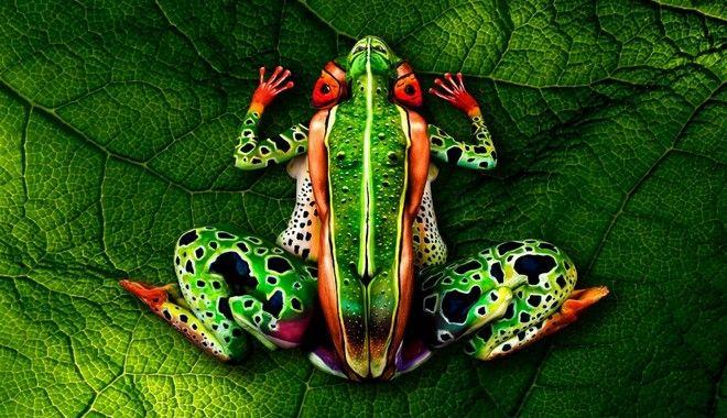 Βάτραχος με 5 ανθρώπινα σώματα
