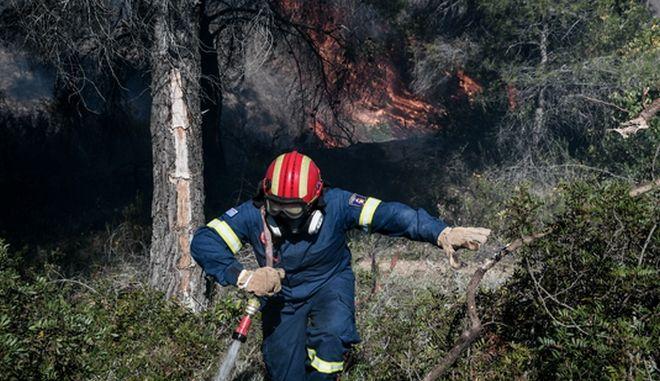 Κρήτη: Φωτιά στις Γούβες Ηρακλείου