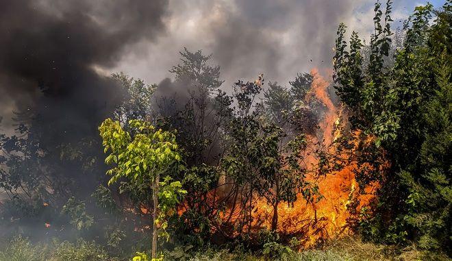 Φωτιά (φωτογραφία αρχείου)