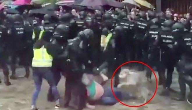 Καταλονία: Σκύλος αρνείται να εγκαταλείψει τον ιδιοκτήτη του την ώρα που τον χτυπούν οι αστυνομικοί