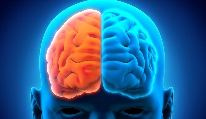Πώς αποκαθίσταται η λειτουργία του ανθρώπινου εγκεφάλου μετά την ημισφαιρεκτομή