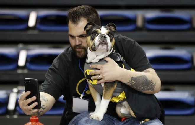 Erin Carlo, of West Des Moines, Iowa, takes a photo with his bulldog Charlie during the 38th annual Drake Relays Beautiful Bulldog Contest, Sunday, April 23, 2017, in Des Moines, Iowa. The pageant kicks off the Drake Relays festivities at Drake University where a bulldog is the mascot. (AP Photo/Charlie Neibergall)